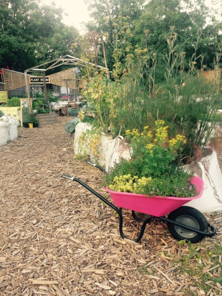 Loughborough Farm open